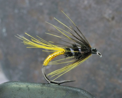 How-to-tie-the-Gold-Tag-Wet-fly