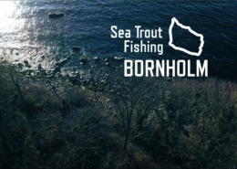 Sea-Trout-Fishing-Bornholm