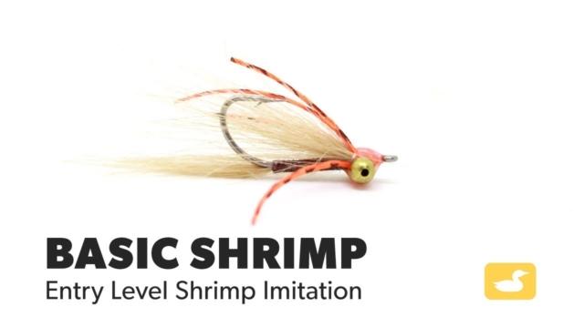 Fly-Tying-Tutorial-Basic-Shrimp