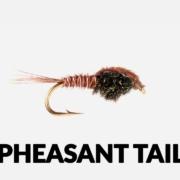 Fly-Tying-Tutorial-Pheasant-Tail
