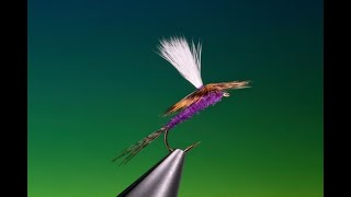 Fly-Tying-a-Purple-Haze-with-Barry-Ord-Clarke