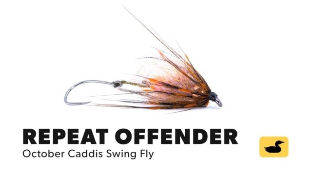 Fly-Tying-Tutorial-Repeat-Offender-October-Caddis-Swing-Fly