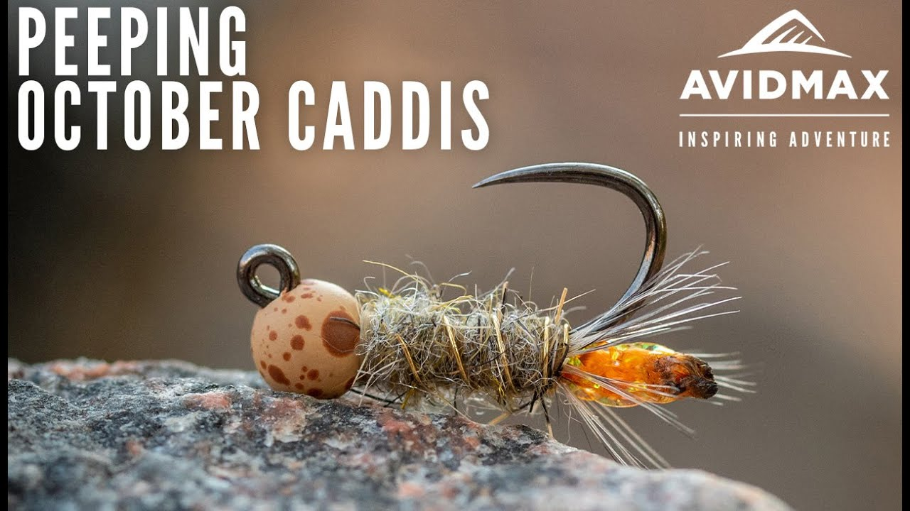 Peeping-October-Caddis-Fly-Tying