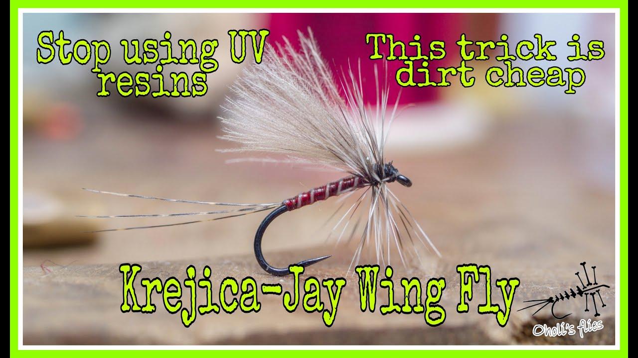Red-Jay-wing-fly-Krejica