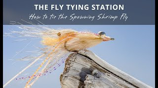 The-Fly-Tying-Station-The-Spawning-Shrimp