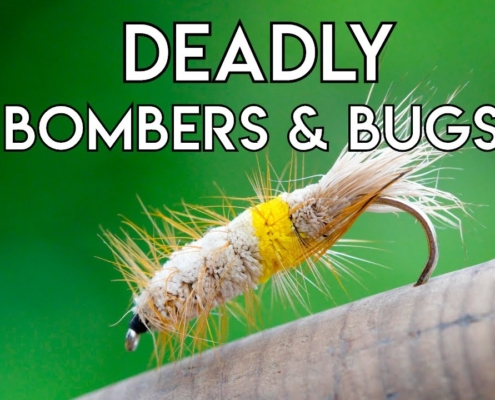 Bomber-amp-Bug-Patterns-for-Trout-amp-Atlantic-Salmon