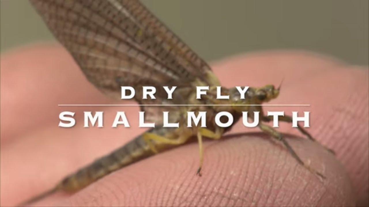 Dry-Fly-Smallmouth-Bass-Hexagenia-Mayflies