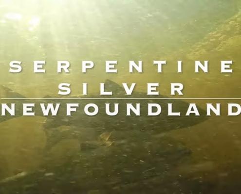 Serpentine-River-Silver