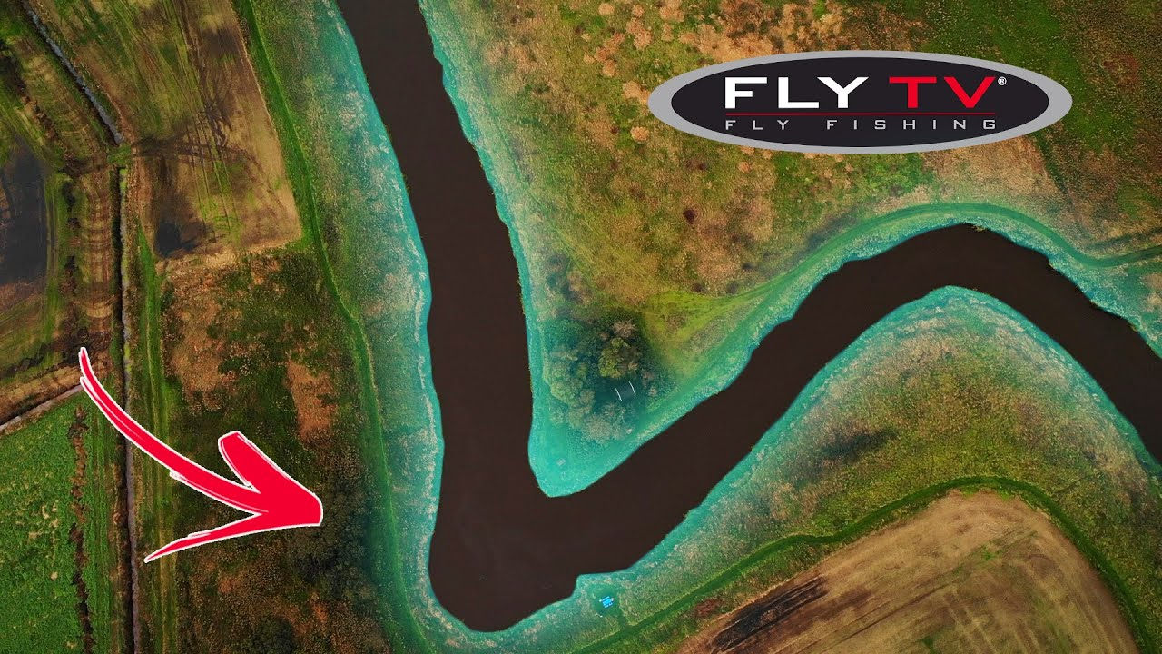 FLY-TV-Small-River-Salmon-in-Denmark-double-handed-fly-fishing