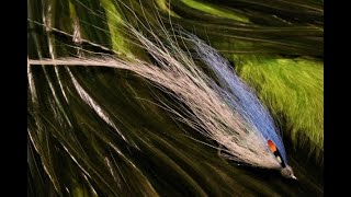 Tying-a-Deep-Flatwing-with-Martyn-White