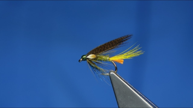 Tying-an-Olive-Connemara-Wet-Fly-by-Davie-McPhail