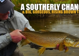 A-Southerly-Change-Big-Gorgeous-Rising-Brown-Trout