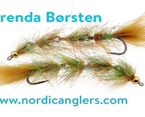Fluebinding-Kystfluen-Brenda-Boersten