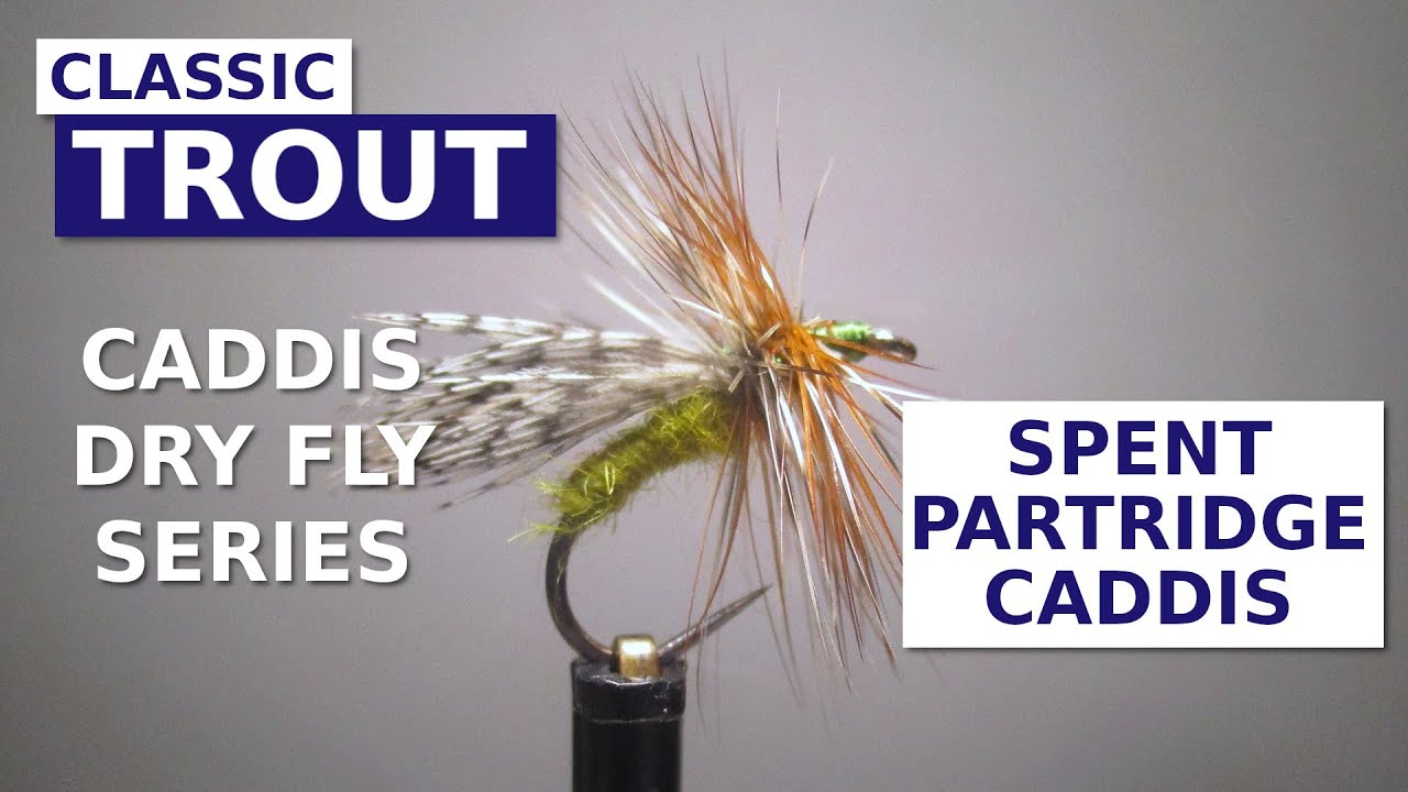 Lawson39s-Spent-Partridge-Caddis-Dry-Fly-Trout-Pattern