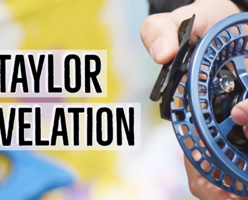 Taylor-Revelation-Fly-Reel-Insider-Review