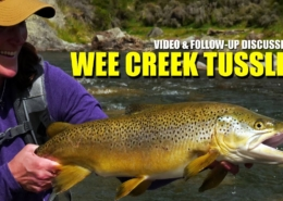 BIG-BROWN-TROUT-How-to-Fly-Fish-Trout-Streams-quotWee-Creek-Tusslesquot