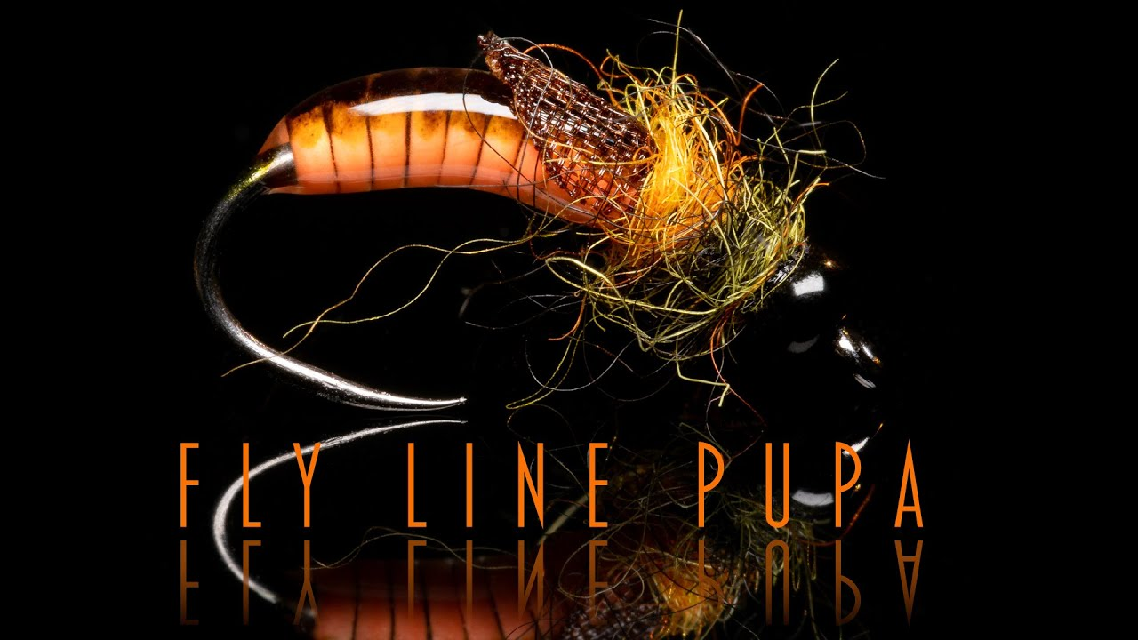 Fly-Line-Pupa-Recycling-an-old-fly-line-to-catch-fish-again