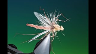 Fly-tying-a-Detached-bodied-daddy-long-legs-with-Barry-Ord-Clarke