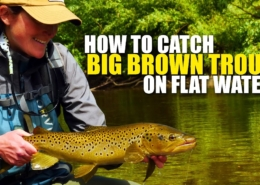 How-To-Catch-a-Big-Brown-Trout-on-Flat-Water