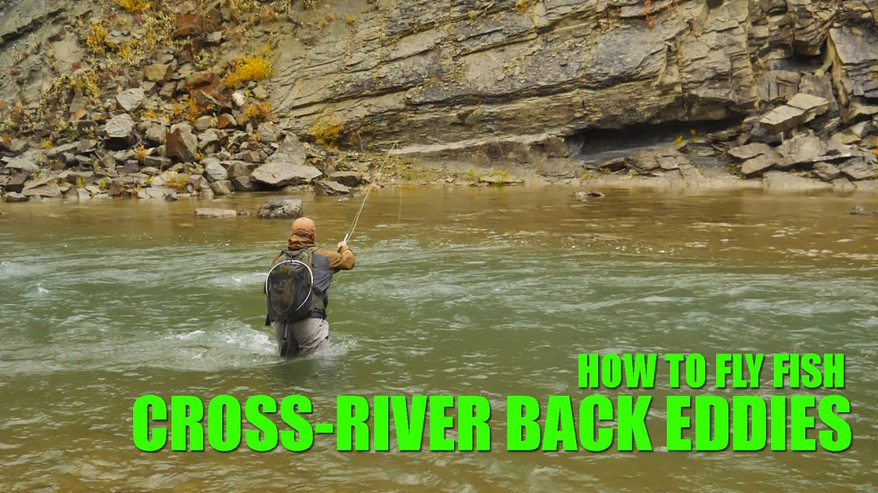 How-To-Fly-Fish-Cross-River-Back-Eddies