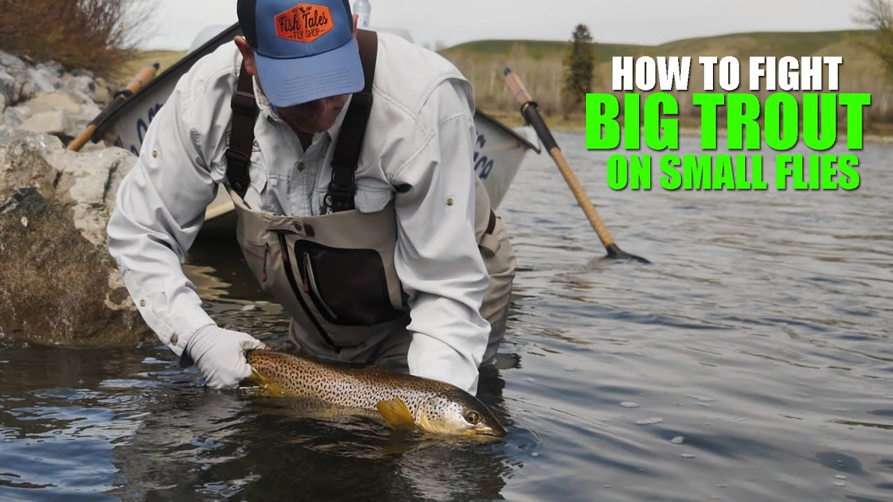 How-to-Fight-Big-Trout-on-Small-Flies