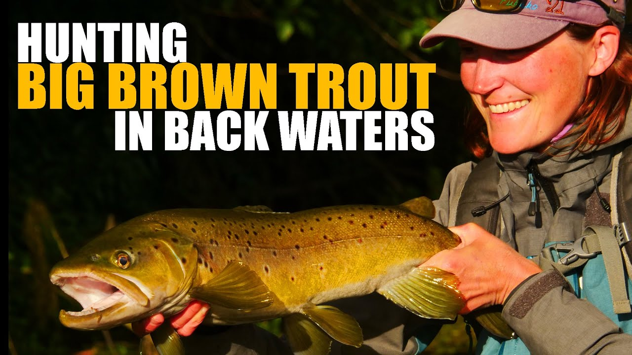 How-to-Fly-Fish-Trout-Streams-Tips-Tactics-amp-Discussion-Backwater-Cyclers