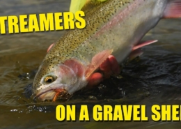 How-to-Streamer-Fish-A-Gravel-Shelf-on-a-Small-Trout-Stream