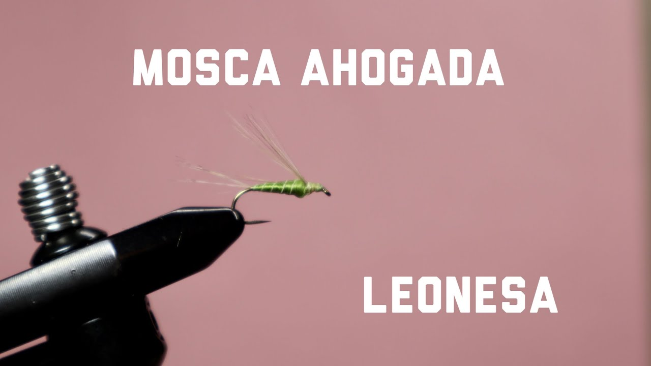 Mosca-Ahogada-Drowned-Fly.-Traditional-fly-from-Leon-Spain-using-Gallo-de-Leon
