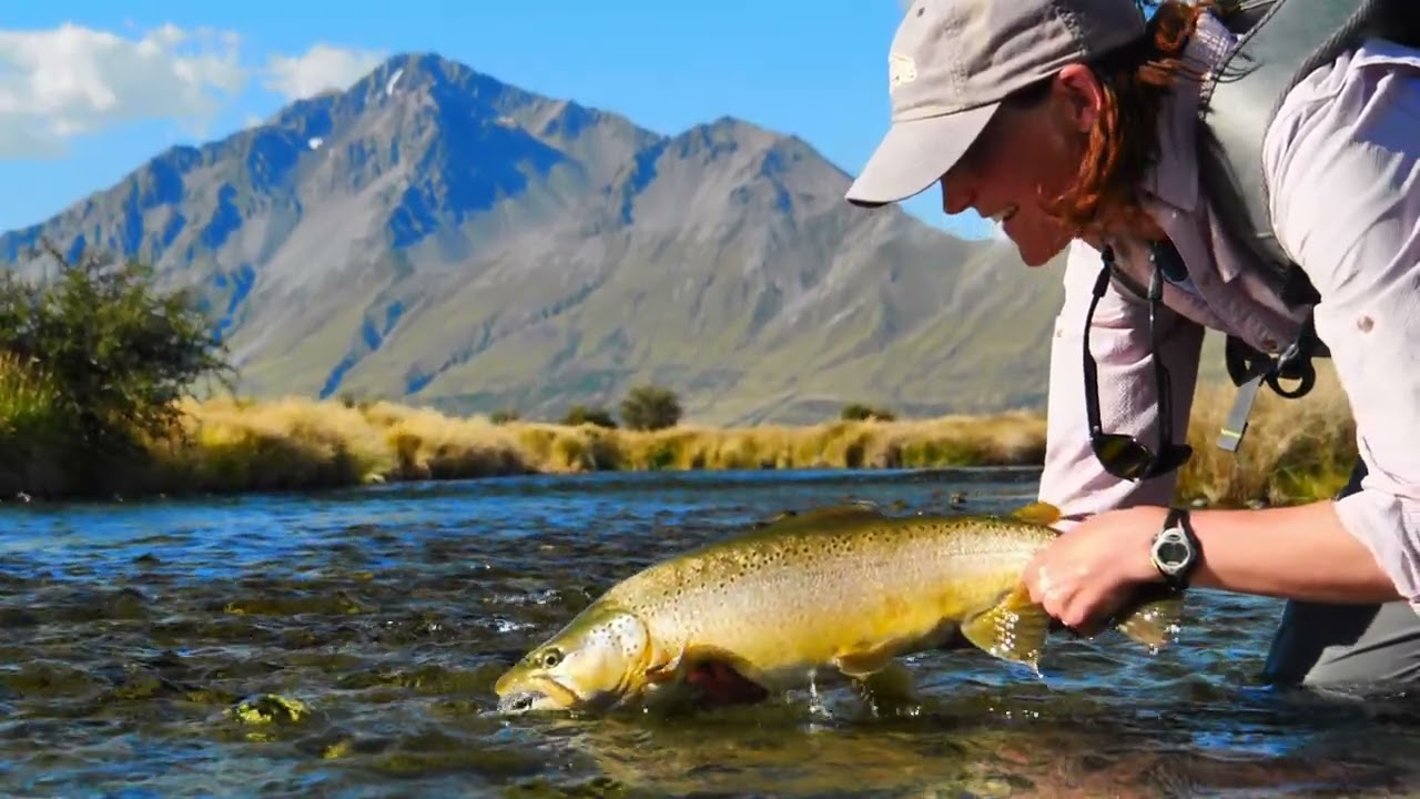 Fly-Fishing-BIG-BROWN-TROUT-in-a-GORGEOUS-high-country-spring-creek