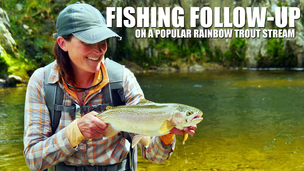 Fly-Fishing-Follow-Up-on-a-Popular-Rainbow-Trout-Stream-How-to-Fly-Fish-PART-1