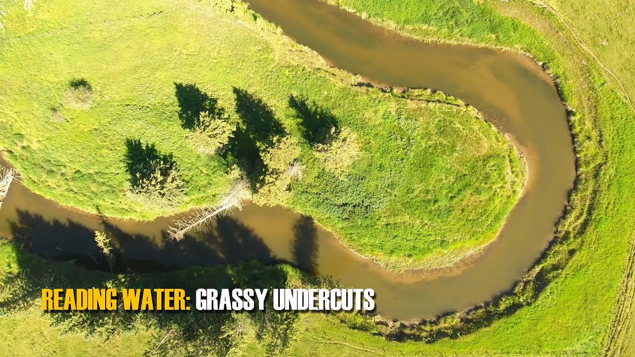 READING-TROUT-WATER-Grassy-Undercuts