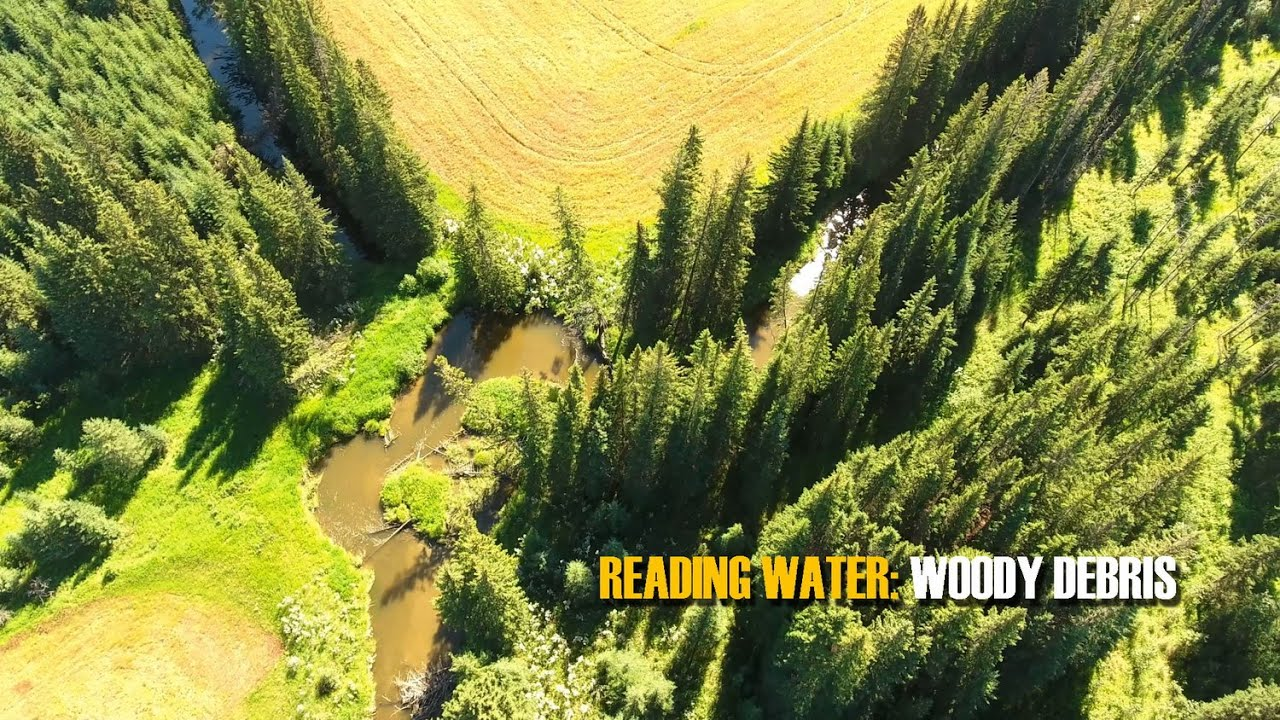 READING-TROUT-WATER-In-Stream-Wood