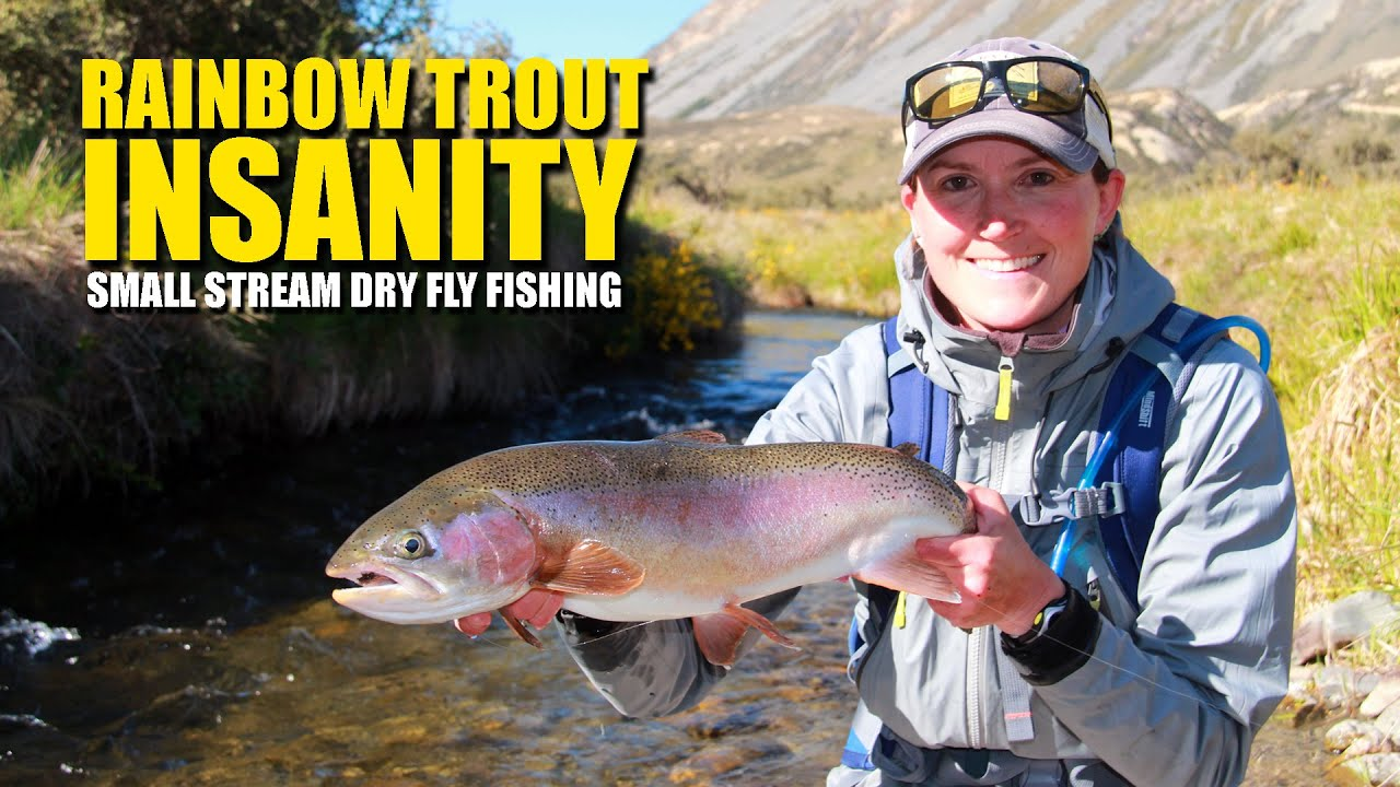 Rainbow-Trout-Insanity-Small-Stream-Dry-Fly-Fishing-EPIC