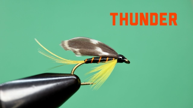 Thunder-Wet-Fly-from-Ray-Bergmans-Trout
