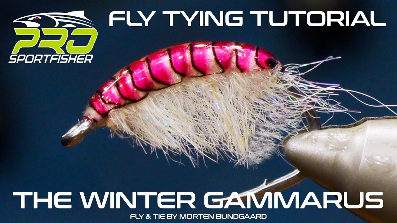 Tying-a-winter-Gammarus