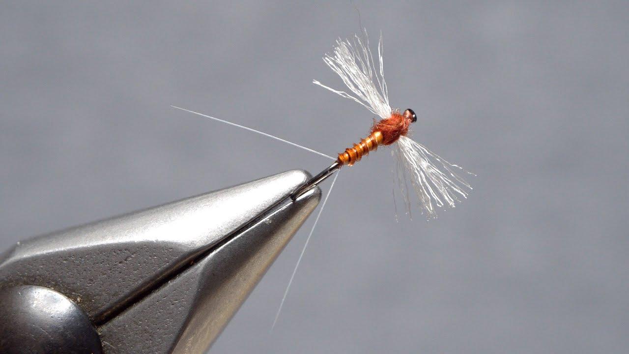 Rusty-Spinner