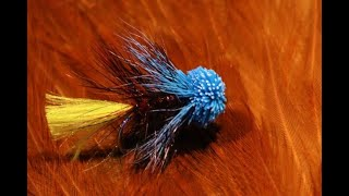 Tying-the-Liquorice-Allsort-with-Martyn-White