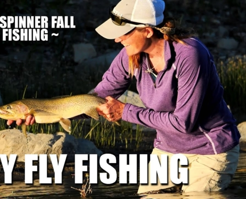 Dry-Fly-Fly-Fishing-Mayfly-Spinner-Fall-Fly-Fishing-Rising-Rainbow-Trout