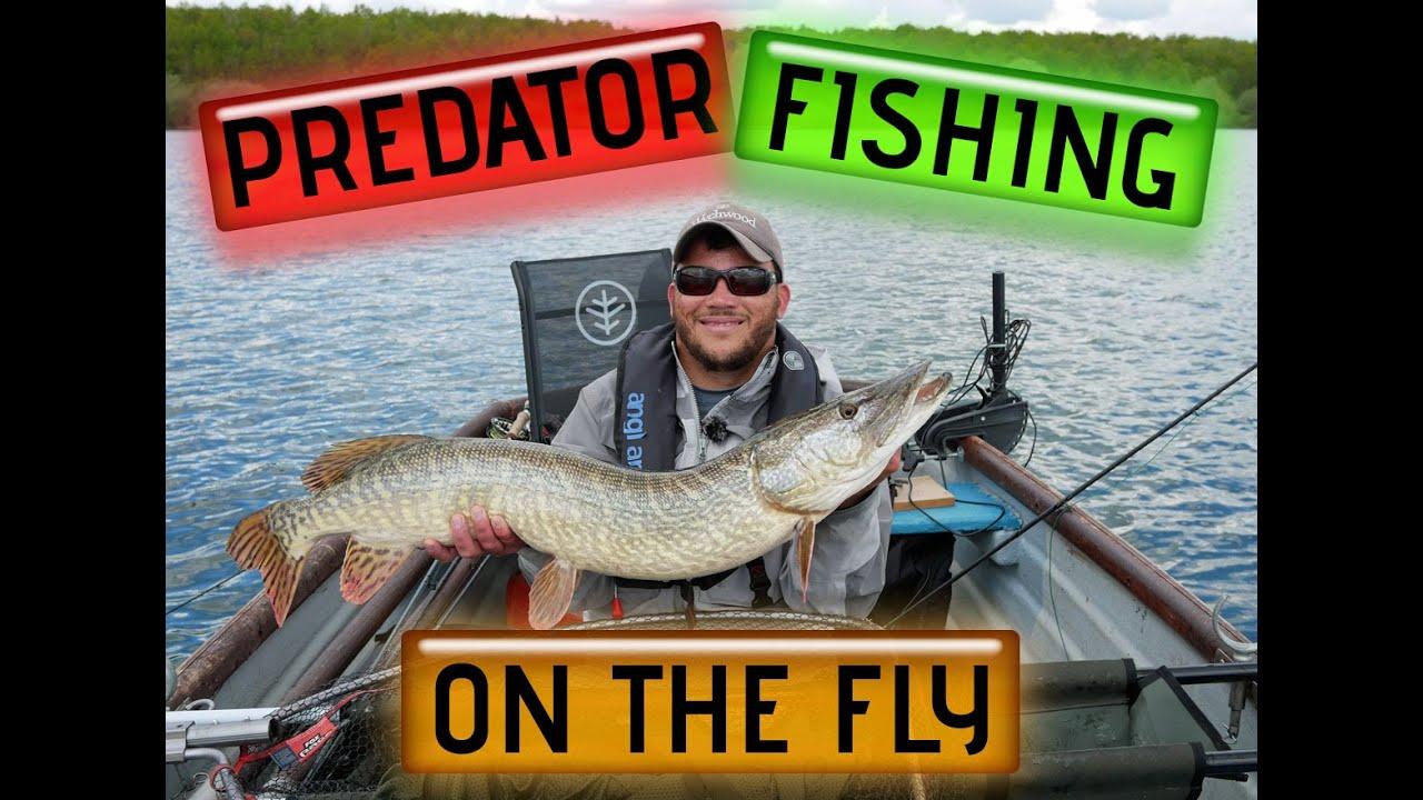 Fly-Fishing-for-Predators-at-Grafham-Water
