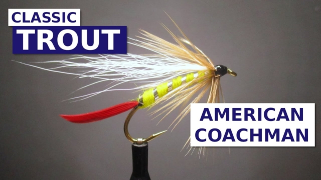 Fly-Tying-the-American-Coachman-Classic-British-Columbia-Fly-Pattern