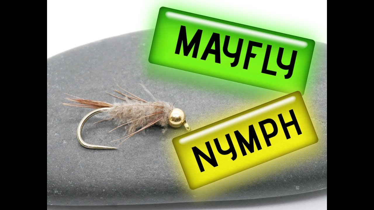 How-to-tie-a-simple-Mayfly-Nymph
