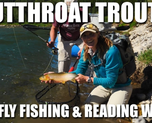 Fly-Fishing-Cutthroat-Trout-Reading-Water-amp-Dry-Fly-Fishing-Fly-Fishing-Cutthroat-Trout