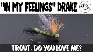 In-My-Feelings-Drake-Bridge-the-gap-between-rap-and-fly-fishing