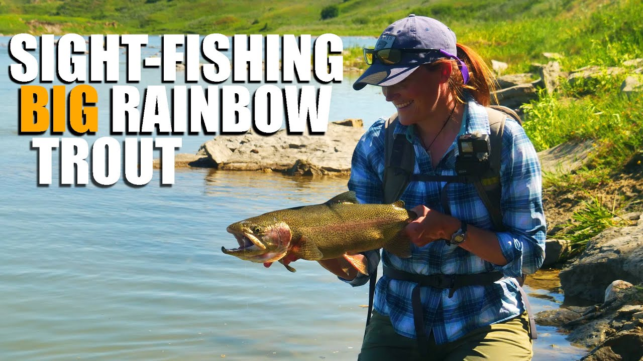 Sight-Fishing-BIG-Rainbow-Trout.-Fly-Fishing-Tactics-to-fly-fish-HUGE-Rainbow-Trout