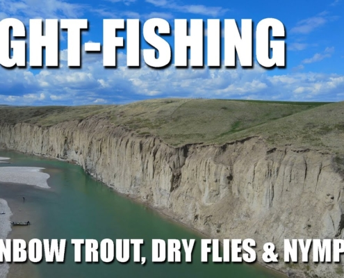 Sight-Fishing-Rainbow-Trout-Dry-Flies-amp-Dropper-Nymphs-on-a-Gravel-Shelf.-Fly-Fishing-in-Alberta