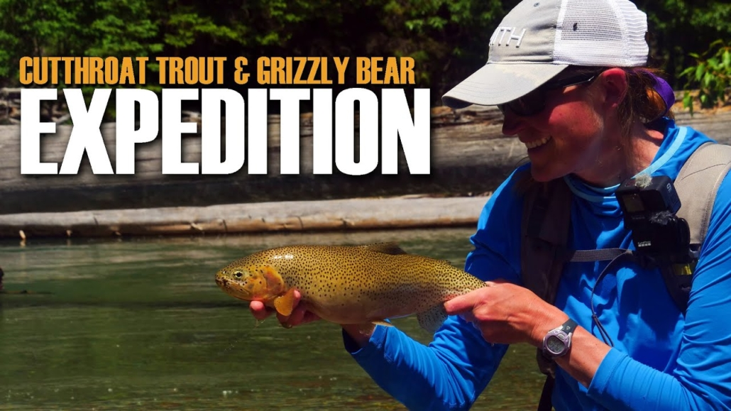 Fly-Fishing-Cutthroat-Trout.-One-Day-Expedition-into-cutthroat-and-grizzly-country.-Fly-Fish-Alberta