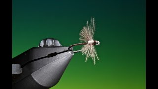 Fly-Tying-a-CDC-Spent-wing-midge-with-Barry-Ord-Clarke