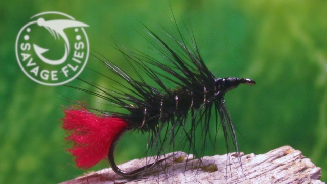 Fly-Tying-the-Zulu-Classic-and-Simple-Wet-Fly-Pattern