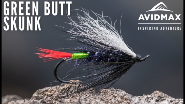 How-to-tie-the-Green-Butt-Skunk-AvidMax-Fly-Tying-Tuesday-Tutorials