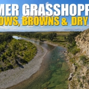 Summer-Grasshoppers-Sunny-Afternoon-Dry-Fly-Fishing-for-Rainbow-amp-Brown-Trout-in-Alberta-Canada